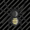 goliath, spider, tarantula icon