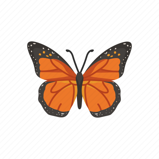 Animal, butterfly, flying insects, insect, moth, pest, skipper icon - Download on Iconfinder