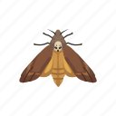 animal, butterfly, flying insects, insects, maggot, moth, pest icon