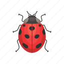 animal, bug, insects, lady beetle, lady bug, ladybird icon
