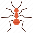 ant, bug, insect, pest icon