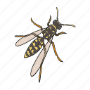 arthropod, fly, insect, sting, wasp icon