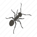 ant, arthropod, emmet, insect icon