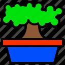 bonsai, dwarf, ornamental, plant, tree icon