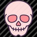 anatomy, body, bones, head, human, organ, skull