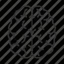 brain, head, intellect, memory, mind, nervous system, organ icon