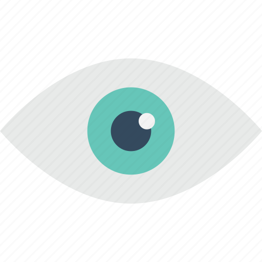 eye, human eye, look, monitoring, watch icon