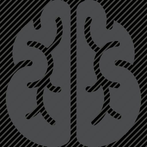 brain, brainstorm, creative, idea, intelligence, mind, thinking icon