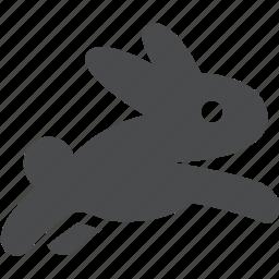 bunny, fast, quick, rabbit, rapid, run, speed icon