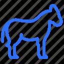 horse, islam, islamic, animal, muslim, religion, mammal