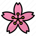 flower, garden, japanese, sakura, spring icon