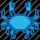 animal, crab, food, japan, sea