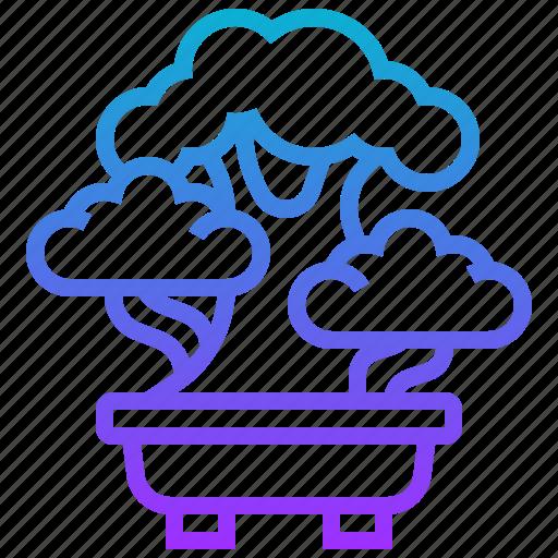 bonsai, japan, plant, tree icon