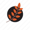 flower, jugle, nature, plant