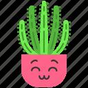 cactus, cactus icon, kawaii, organ pipe icon