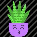 cactus, cactus icon, kawaii, zebra icon