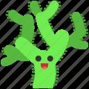 cactus, cactus icon, kawaii, teddy bear cholla icon