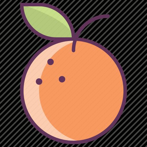 breakfast, cooking, food, fruit, kitchen, orange icon