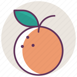 breakfast, cooking, food, fruit, kitchen, orange icon