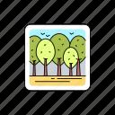 landscape, forest, greenwood, trees