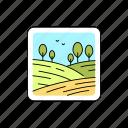 landscape, grassland, field, meadow
