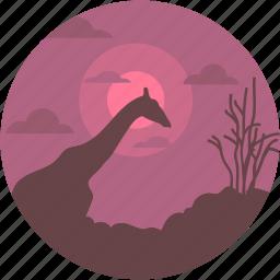 forest, forestland, jungle, wildlife, wildlife forest icon