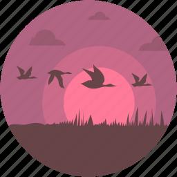 birds, evening, islands, nature, sunset icon