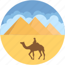 camel, desert, egypt pyramid, giza, landmark icon
