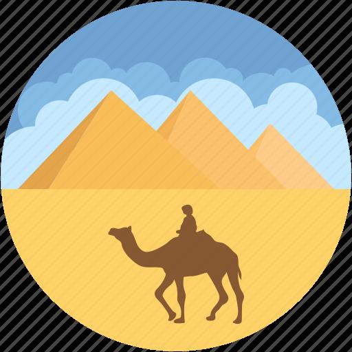 camel, desert, egypt pyramid, giza, landmark icon