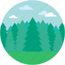 douglas fir, fir forest, fir tree, greenery, spruce forest icon