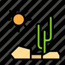 sun, cactus, nature