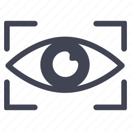 crime, eye, law, view, visible, vision icon