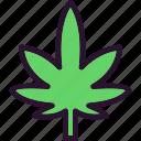 flower, leaf, marijuana, plant