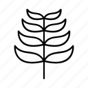 nature, outline, leaf, plant, environment, tree icon