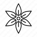 flower, nature, outline, leaf, environment, floral icon