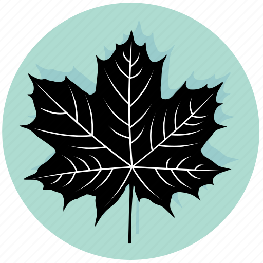 floral, forest, leaf, maple, nature, plant, tree icon