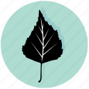 birch, eco, floral, forest, leaf, nature, plant icon