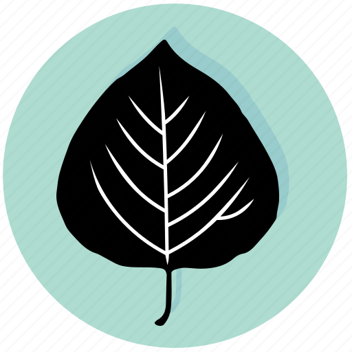 aspen, ecology, forest, garden, leaf, nature, plant icon
