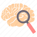 brain, find, glass, magnifier, magnifying, search, zoom icon