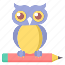 animal, education, night, owl icon