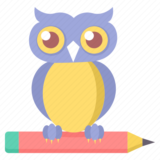 animal, education, night, owl icon