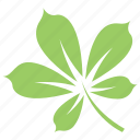 chestnut leaf, green leaf, leaf, leaf design, leaf shape icon