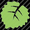 aspen leaf, green leaf, leaf, serrated leaf, toothed leaf icon