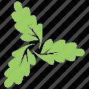 floral, flowery design, green leaves, leafy flower, oak swirl leaves icon