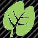 creative leaf, foliage, generic leaf, green leaf, nature inspiration icon
