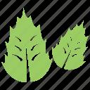 ecology symbol, leafy logo, plant nursery, two leaf symbol, two leaves icon