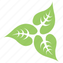floral, flowery design, green leaves, leafy flower, swirl leaves icon