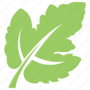 grape leaf, green leaf, leaf, leaf design, leaf shape icon
