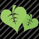 green leaves, heart-shaped leaves, leaf, leaf design, linden leaves icon