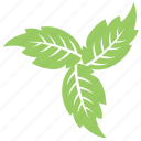 foliage, green leaf, leaf design, leaf flower, leaves, veppilai leaves icon